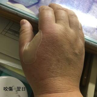 池田医院 整形外科 外科 リハビ...